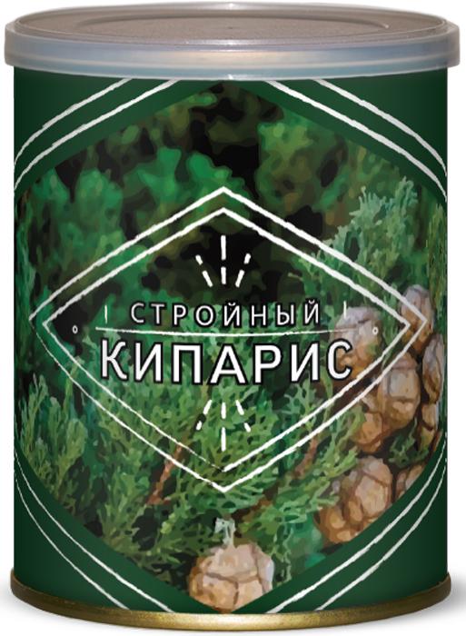 """Набор для выращивания Bontiland """"Стройный кипарис. Кипарис вечнозеленый"""""""