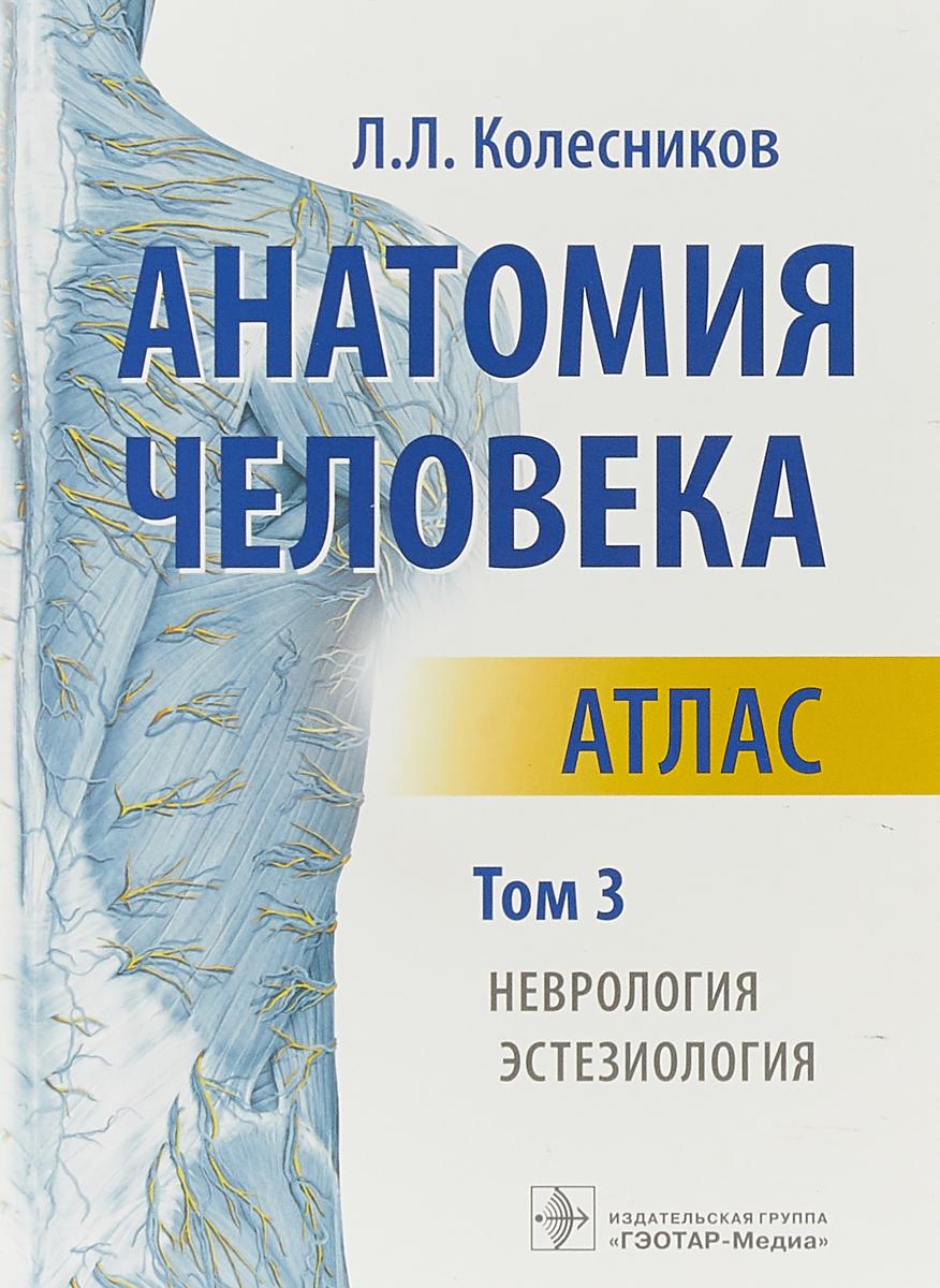 Л.Л. Колесников Анатомия человека. Атлас. Том 3. Неврология, эстезиология анатомия человека русско латинский атлас