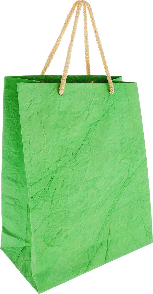 Пакет подарочный Дизайнерский, 28 х 17 х 7 см. 2728081 цвет: салатовый пакет подарочный правила успеха щелкунчик 30 х 38 см
