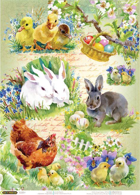 Рисовая бумага для декупажа Craft Premier Цыплята и кролики, формат А4 рисовая бумага для декупажа craft premier а4 сладкая жизнь cp04549 1