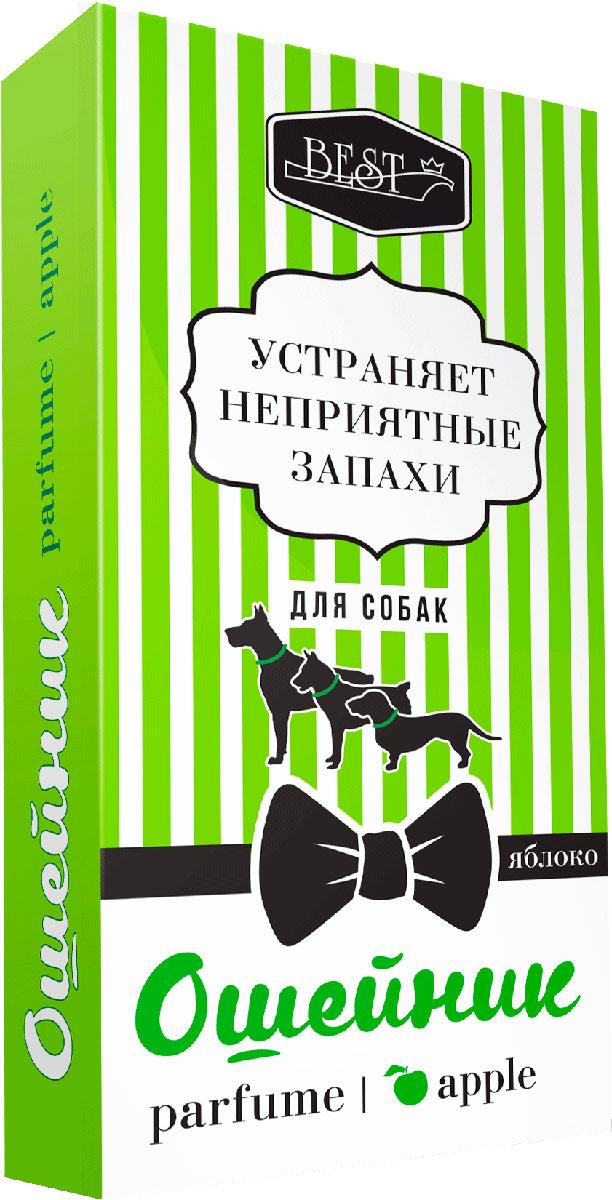 Ошейник BEST Яблоко, для собак, парфюмированный, 65 см