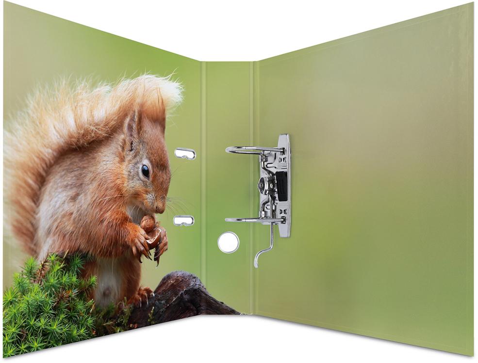 Папка-регистратор с арочным механизмом Лесные Животные А4 обложка 70 мм Herma