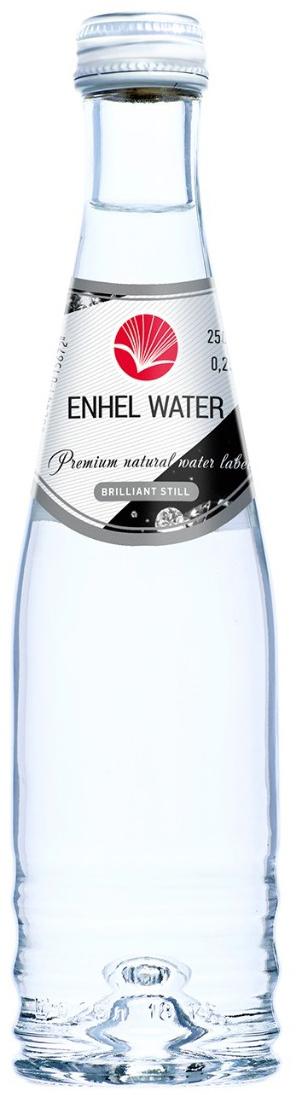Enhel Beauty Water Вода минеральная негазированная, 0,25 л kissme детское питание дозатор многоцелевой набор для приготовления пищи из 7 зеленый