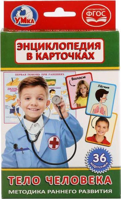 Умка Обучающие карточки Тело человека гуиди винченцо тело человека занимательная энциклопедия для детей