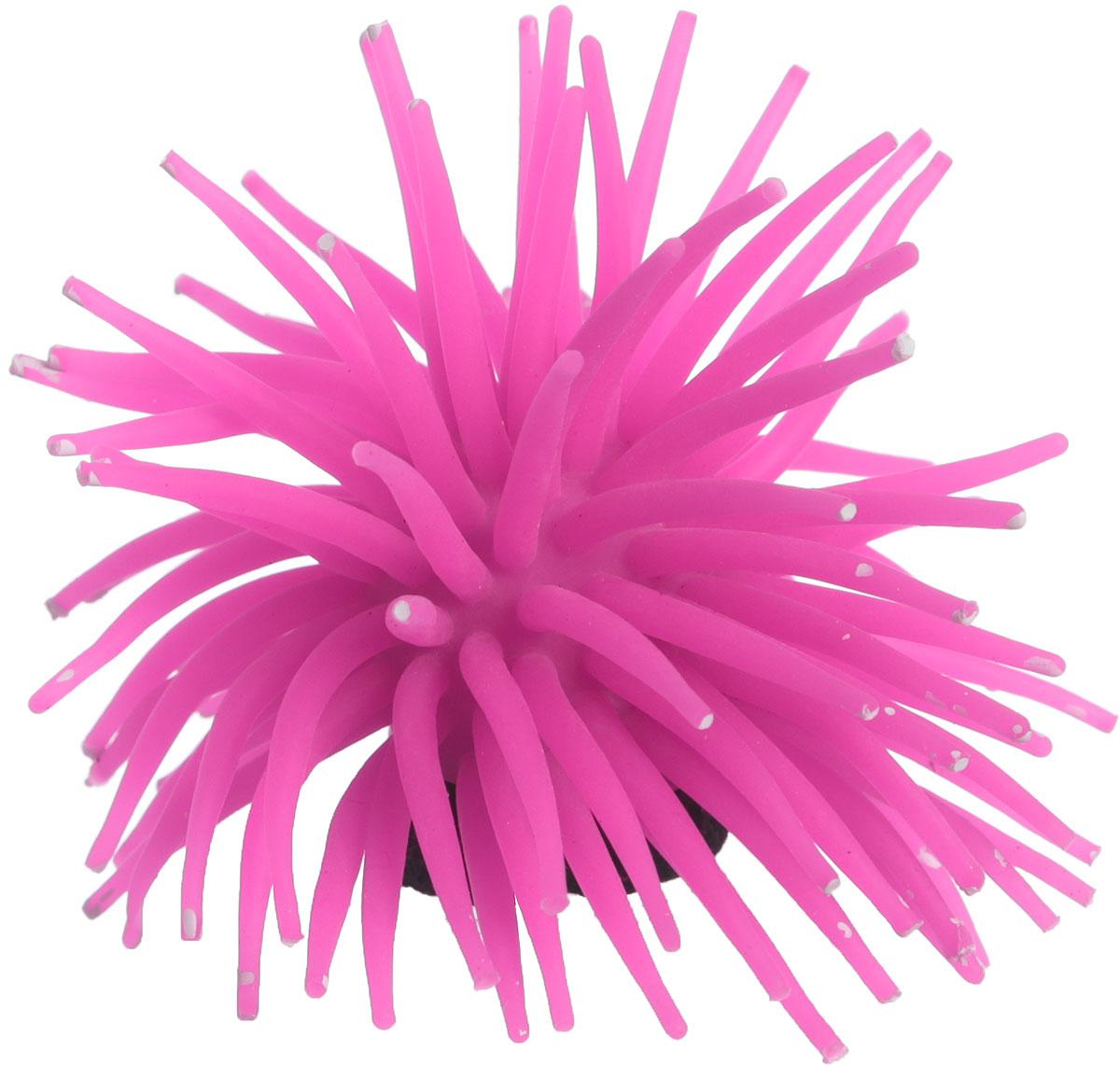 Коралл для аквариума Уют Разноцветные щупальца, силиконовый, цвет: розовый, 8 х 8 х 7 см naillook переводные татуировки для кутикулы 12 8 см х 8 см