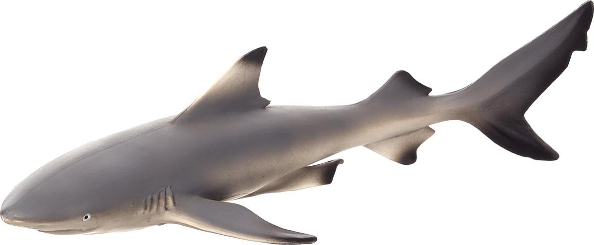 Mojo Фигурка Чернопёрая рифовая акула рюкзак детский mojo pax mojo pax рюкзак boombox с колонками черный белый