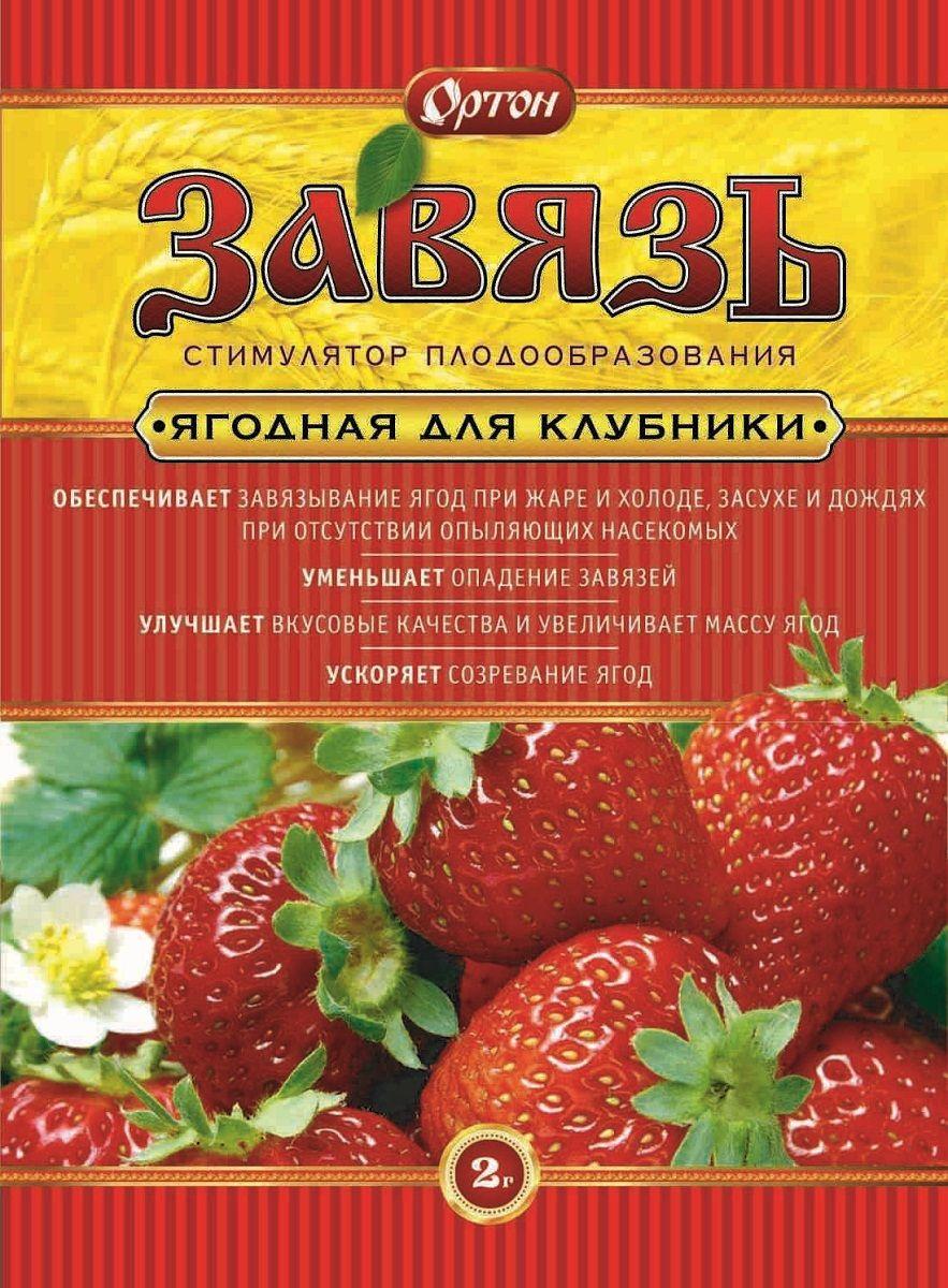 Стимулятор Ортон Завязь, для ягод, 2 г
