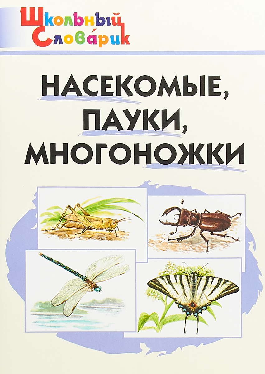 М. Н. Сергеева Насекомые, пауки, многоножки