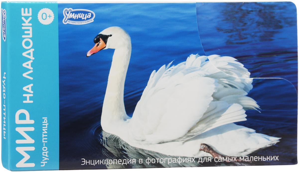 Умница Обучающие карточки Чудо-птицы Лебедь обогреватель умница тв 2000вт п