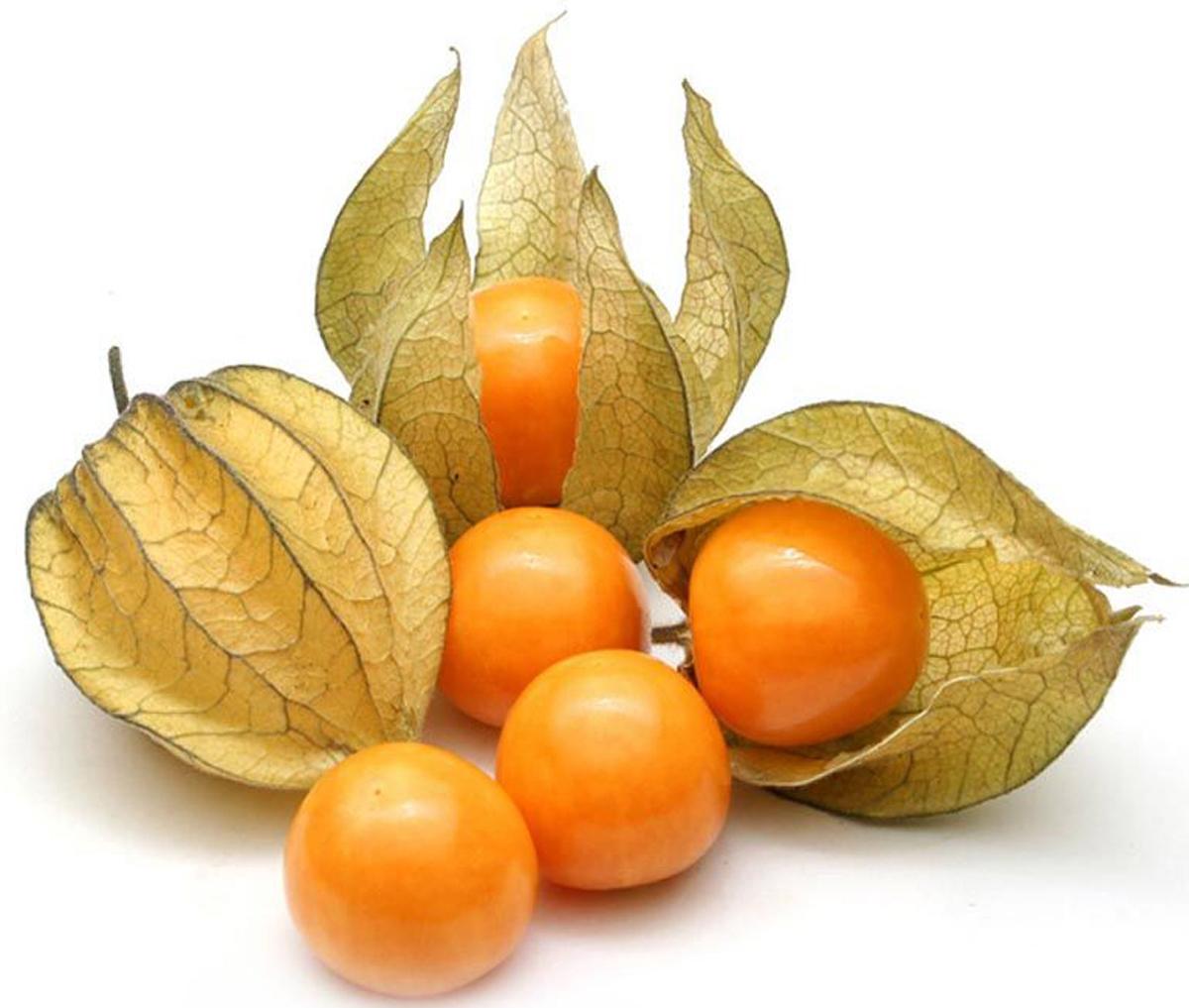 Artfruit Физалис, 100 г мистраль чечевица пестрая пардина 450 г