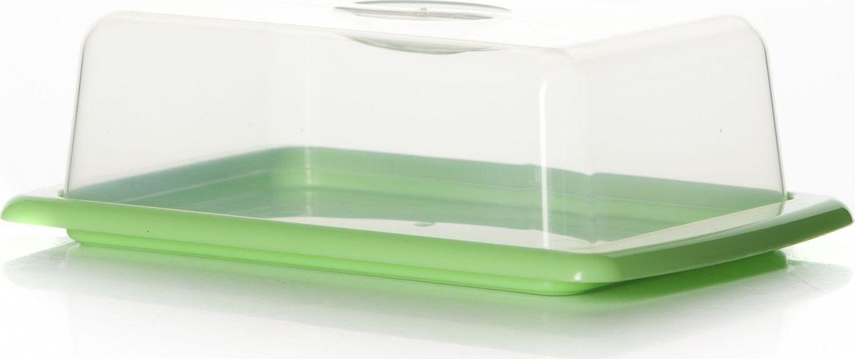 """Масленка Альтернатива """"Смак"""", выполненная из высококачественного пластика, предназначена для красивой сервировки и хранения масла. Она состоит из подноса и прозрачной крышки с ручкой. На подносе имеются специальные выемки, благодаря которым крышка легко на него устанавливается. Благодаря такой масленке ваше масло всегда будет свежим."""
