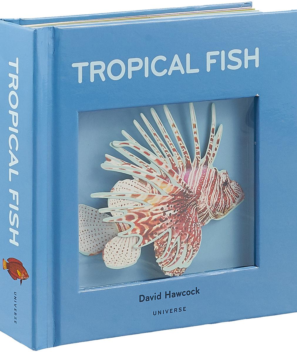 Tropical Fish жк телевизор sony oled телевизор kd 55a1
