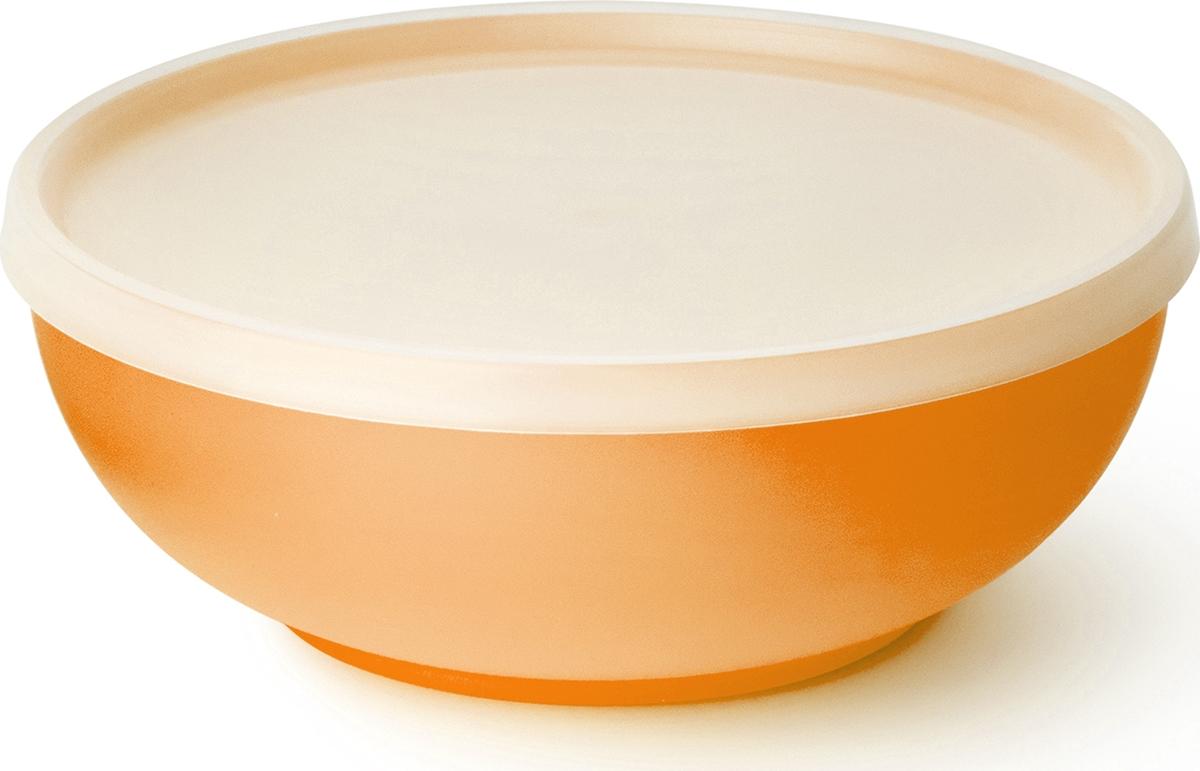 """Миска салатная Sagad """"Пикникс"""" изготовлена из полупрозрачного пластика. Имеет гладкую внутреннюю поверхность. Крышка выполнена из толстого полиэтилена, имеет максимальное прилегание, что обеспечивает полную герметичность.Вся серия представлена в шести ярких цветах."""