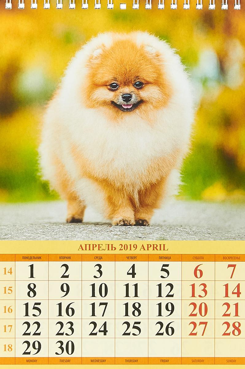 Портрет друга (170*250). Календарь 2019.
