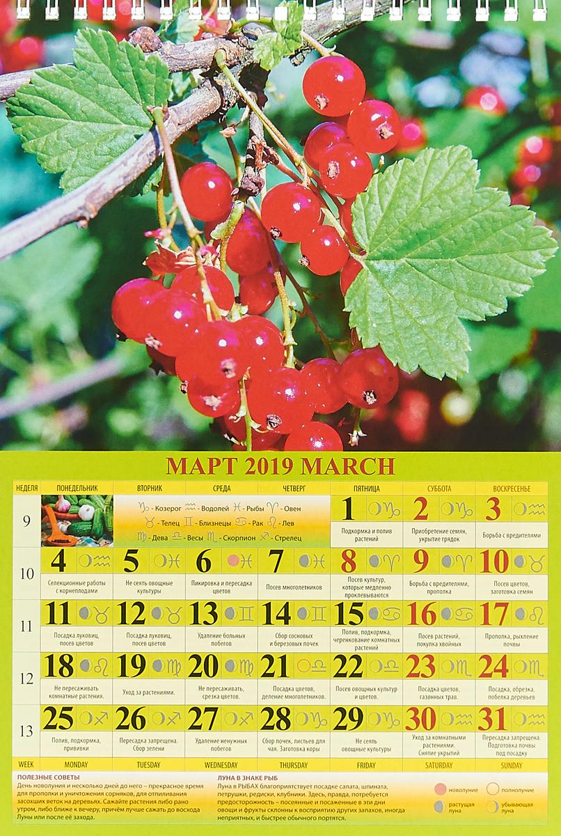Садово-огородный лунный календарь (170*250). Календарь 2019.