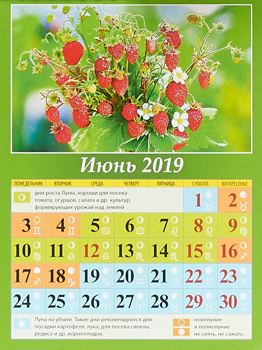 Сад и огород.Лунный календарь Календарь на магните отрывной 2019.