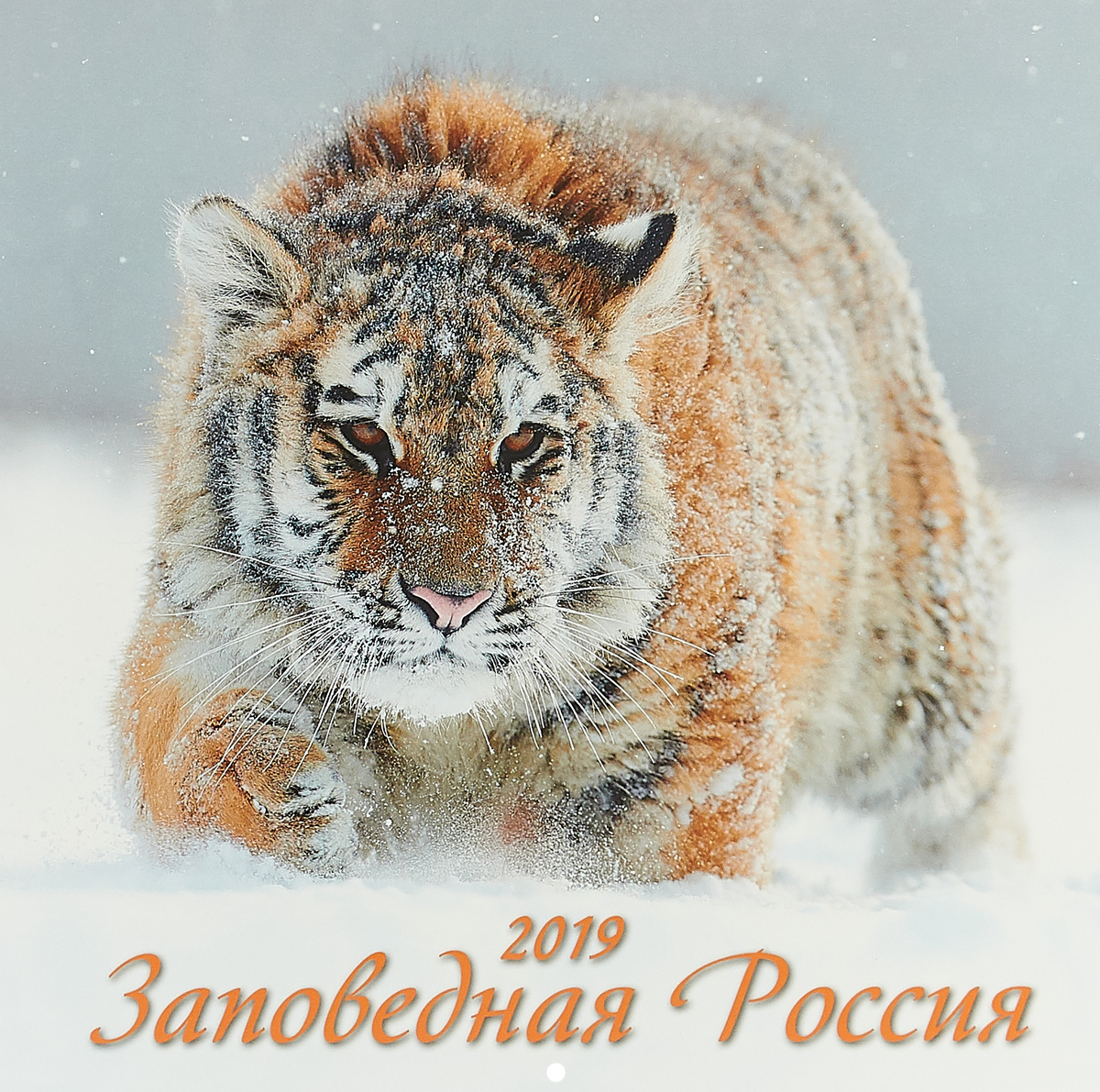 Заповедная Россия. Календарь (285*285) 2019 ISBN: 4627130414703 sitemap 285 xml