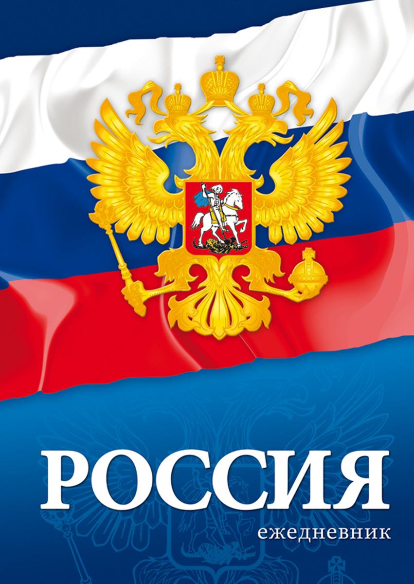 Апплика Ежедневник недатированный Российская символика Флаг и герб 128 листов мойка champion hp5210