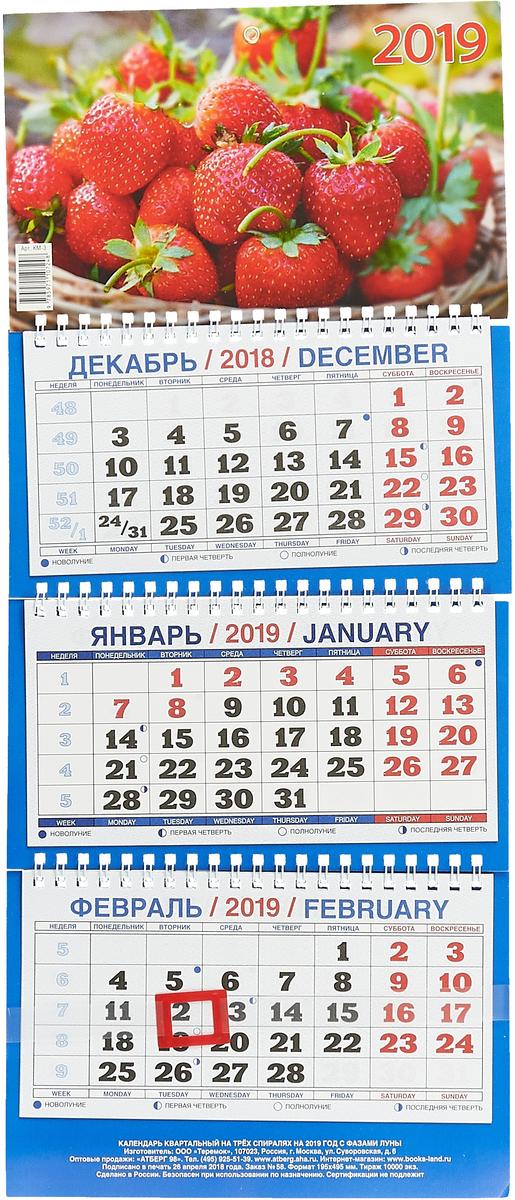 Календарь 2019 (на спирали). Клубника ручка гелевая silwerhof laconic 026160 04 0 7мм красные чернила коробка картонная