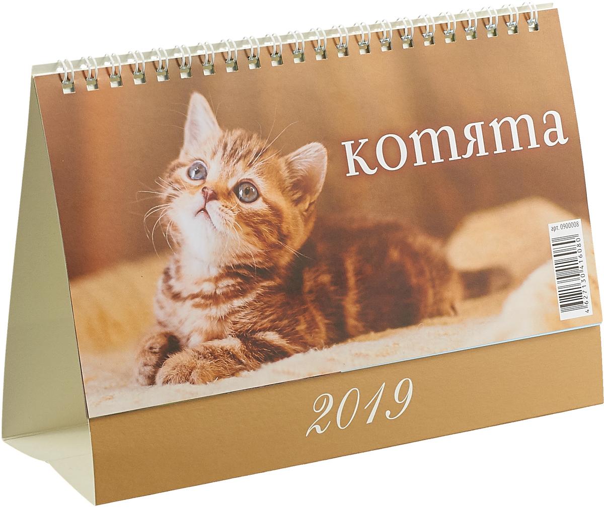 Котята (200*140). Календарь 2019 календарь с астропрогнозом 100 140 календарь 2019
