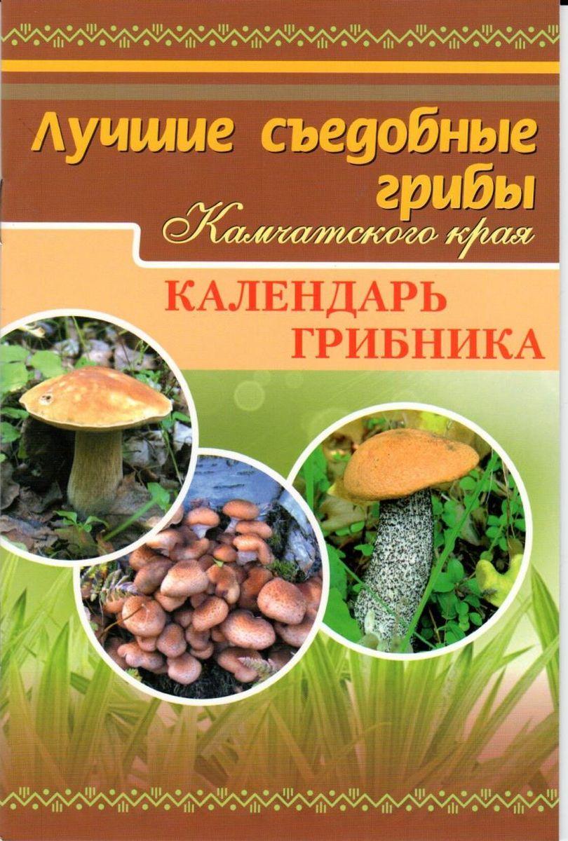 Лучшие съедобные грибы Камчатского края. Календарь грибника