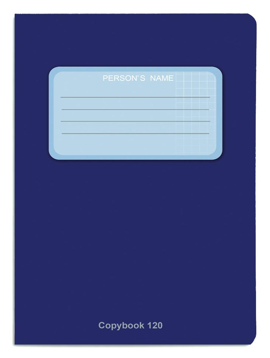 Проф-Пресс Тетрадь 120 листов в клетку цвет синий книги проф пресс постаничная вырубка сказочные принцессы
