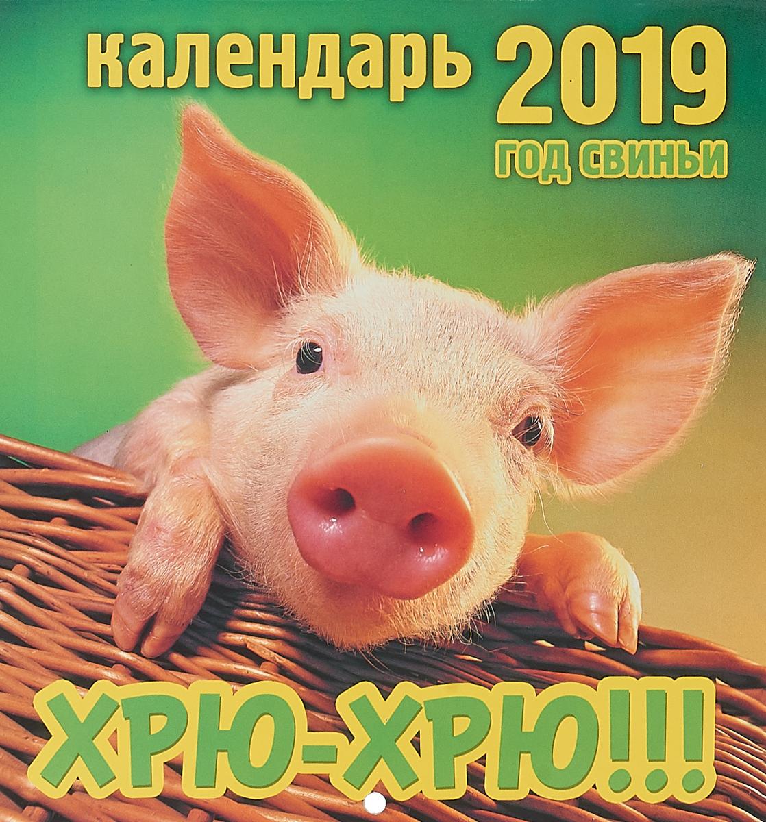 Календарь. 2019 г. Перекидной. 19х20,5. Хрю-хрю!