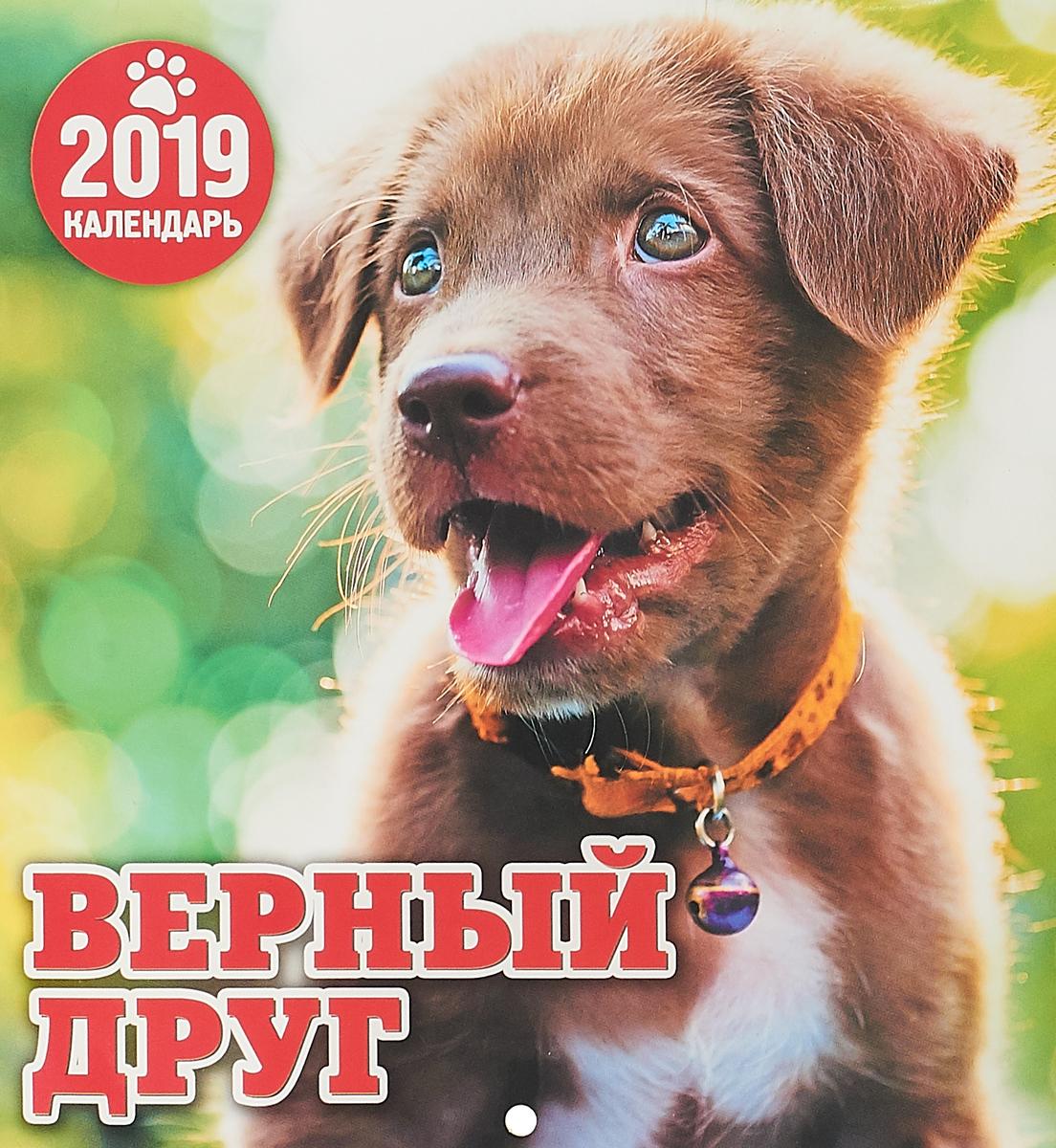 Календарь. 2019 г. Перекидной. 19х20,5. Верный дру г