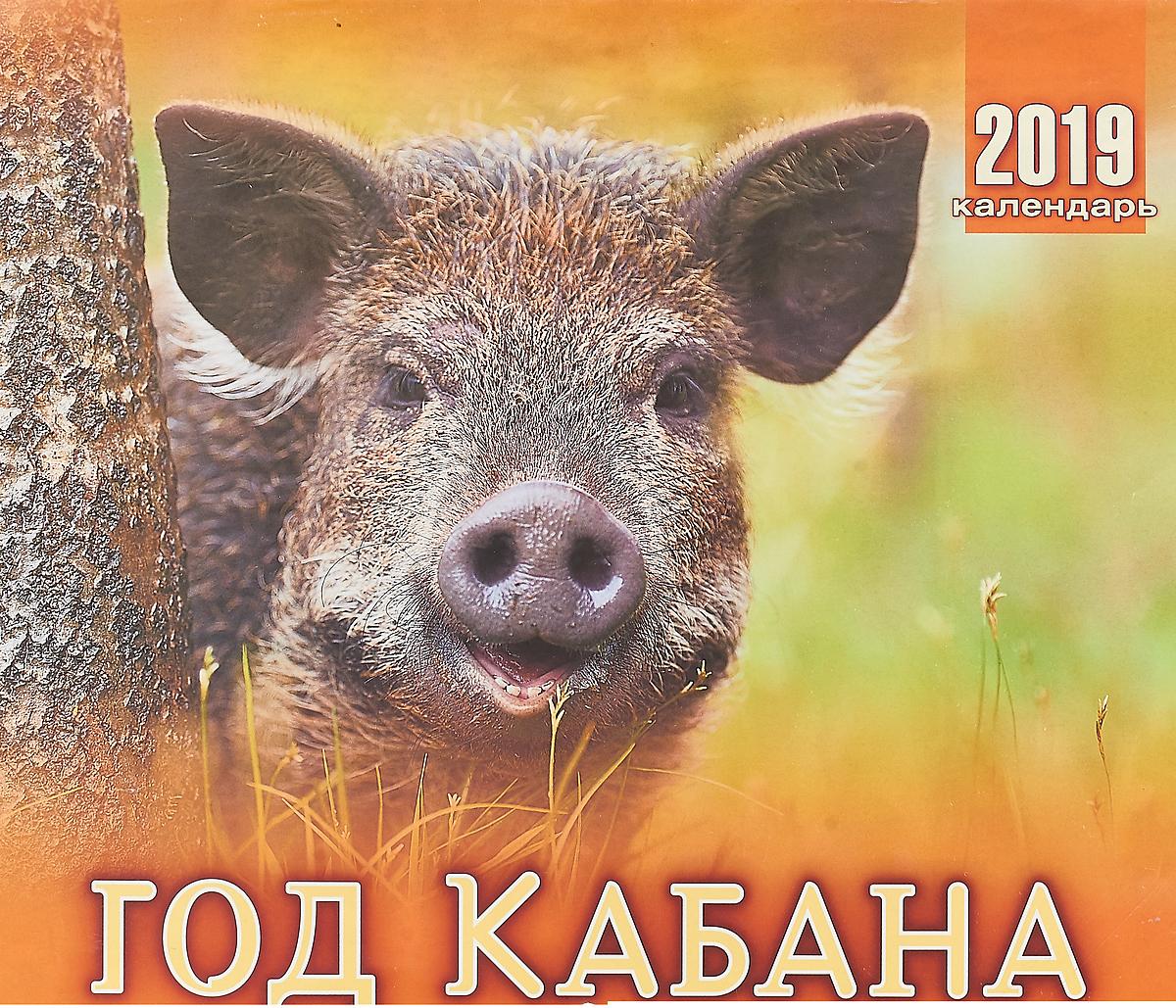 Календарь. 2019 г. Перекидной. 33х29. год кабана