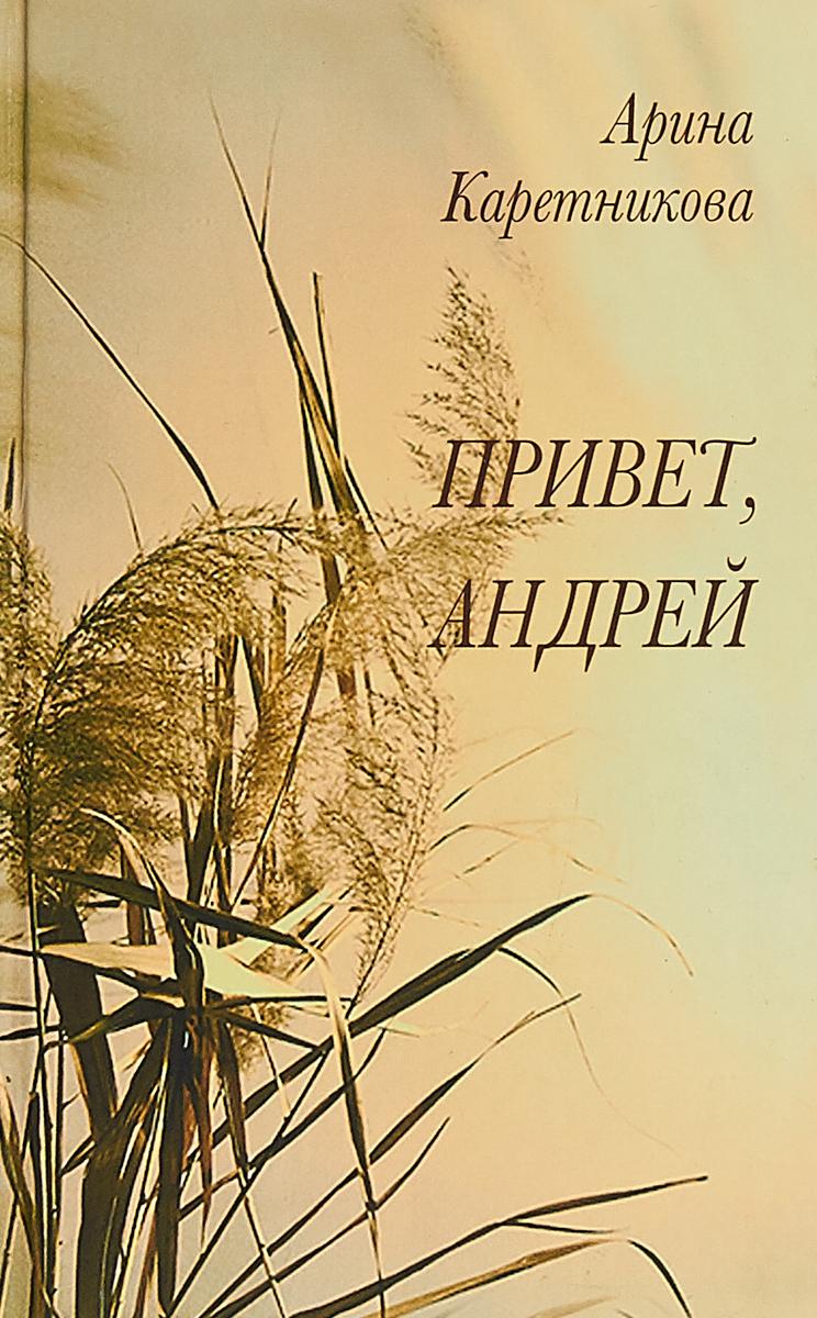Каретникова А. Привет, Андрей ISBN: 978-5-82420-161-1