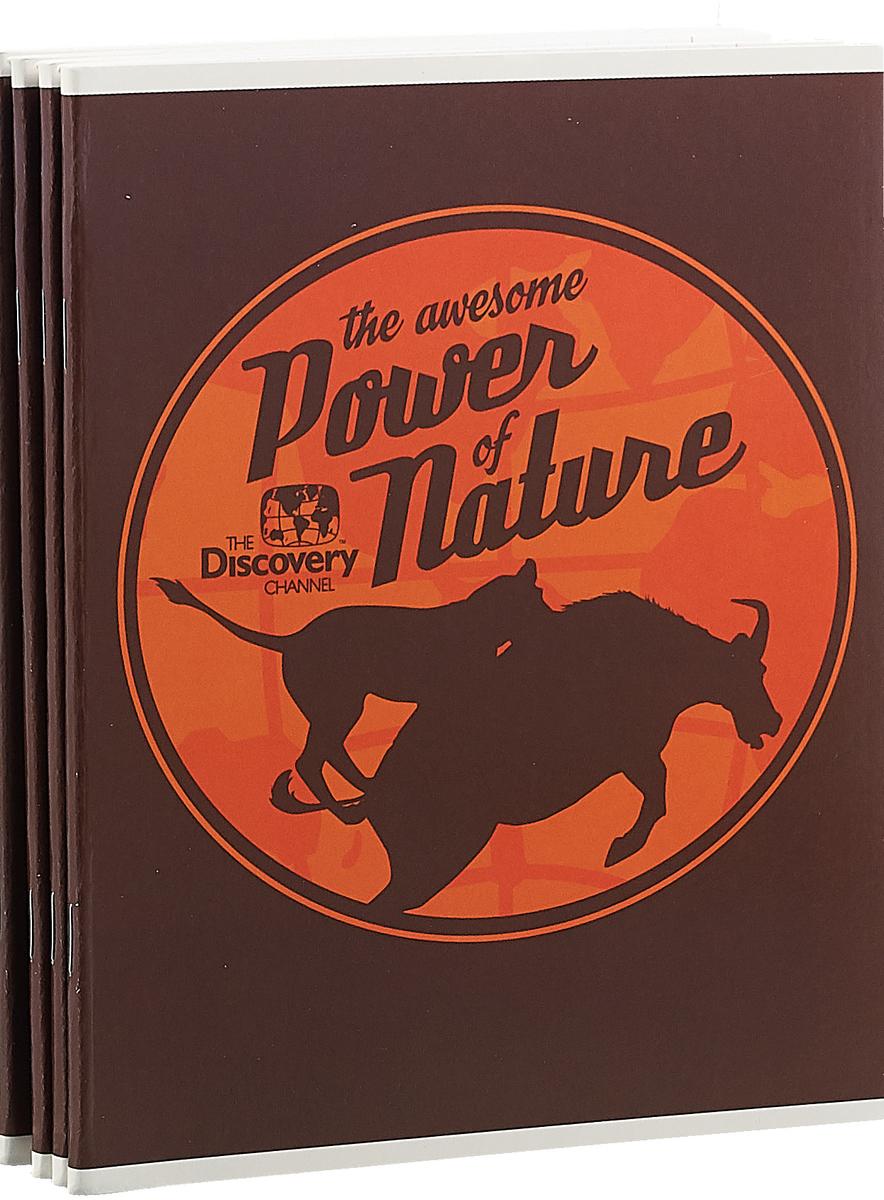 Набор тетрадей Action! Discovery 48 листов 4 шт our discovery island 4 dvd