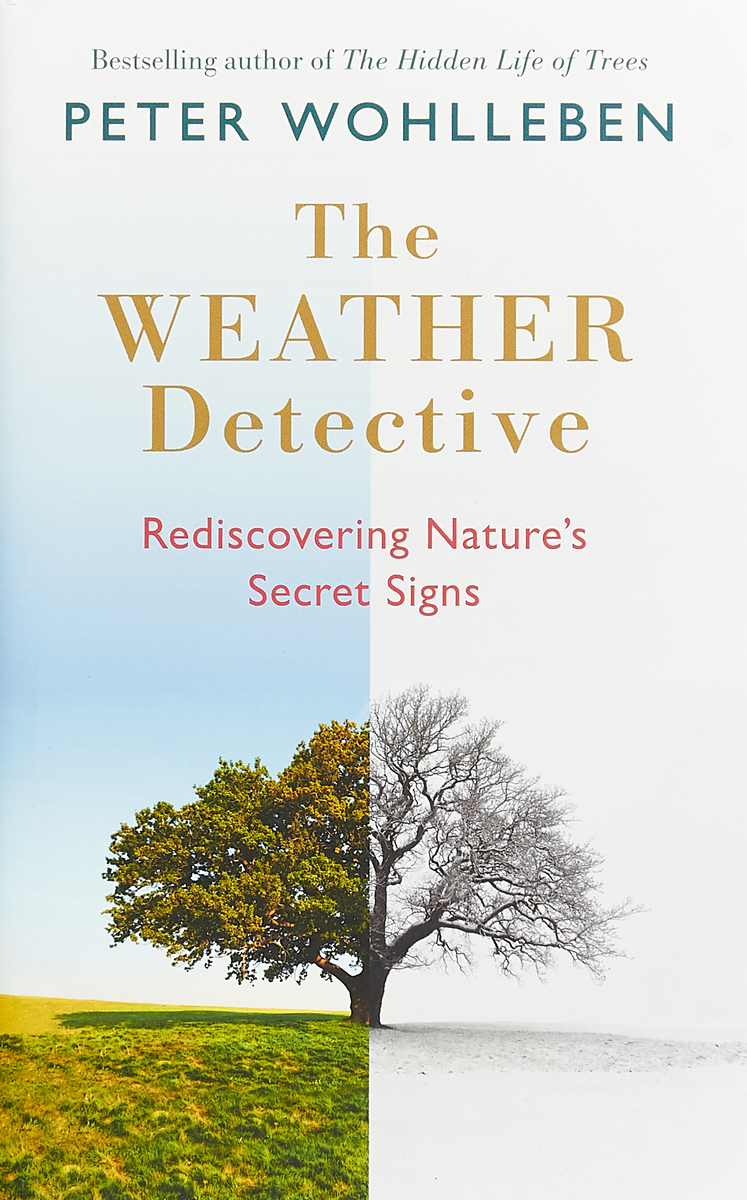 The Weather Detective: Rediscovering Nature's Secret Signs dolphins 1 how s the weather