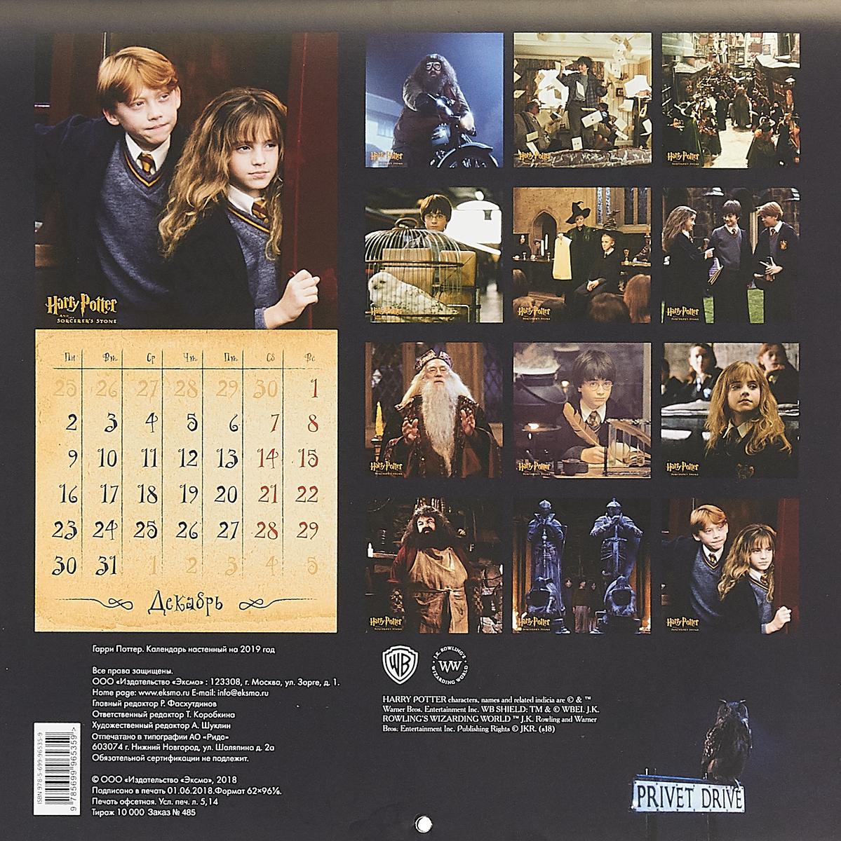 Календарь настенный на 2019 год. Гарри Поттер. Т. О. Коробкина