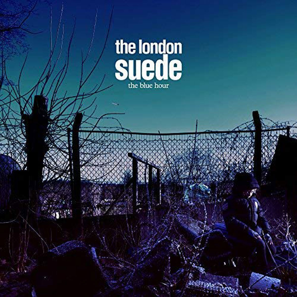 Suede Suede. The Blue Hour (2 LP + 2 CD + DVD) brown point toe suede over the knee boots