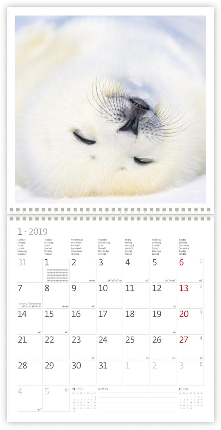 Календарь-органайзер: White (Белый)  2019.