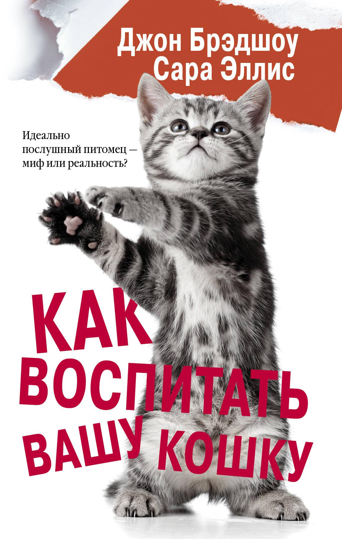 Джон Брэдшоу,Сара Эллис Как воспитать вашу кошку годен к коден к как достичь блаженства руководство для котов и их хозяев
