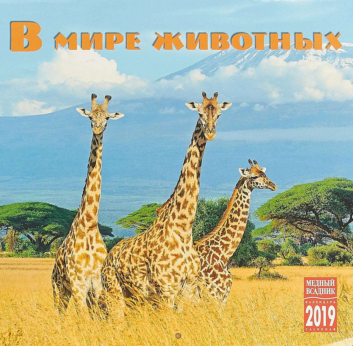 Календарь на спирали на 2019 год. В мире животных календарь на 2016 год на спирали символ года вид 2 320 480мм