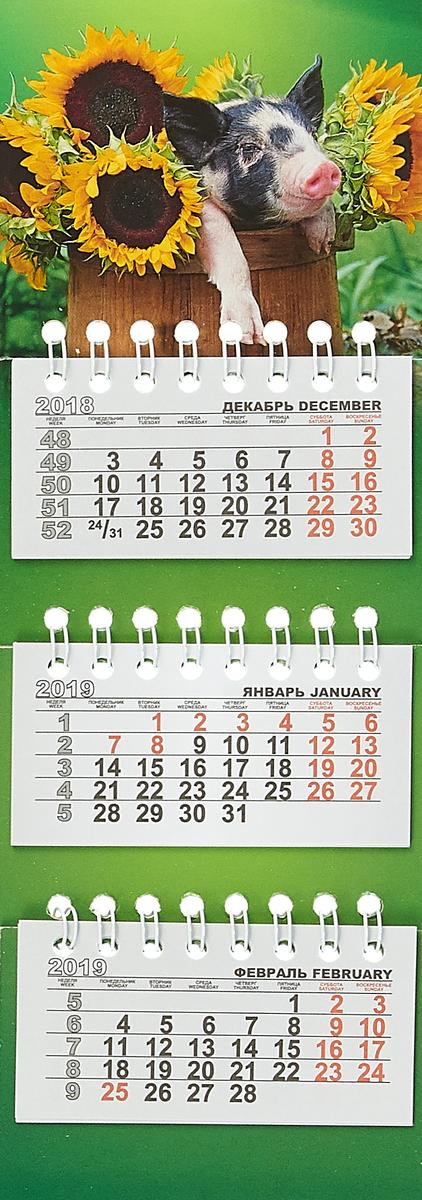 Календарь на спирали микро-трио на 2019 год. Свинка в подсолнухах