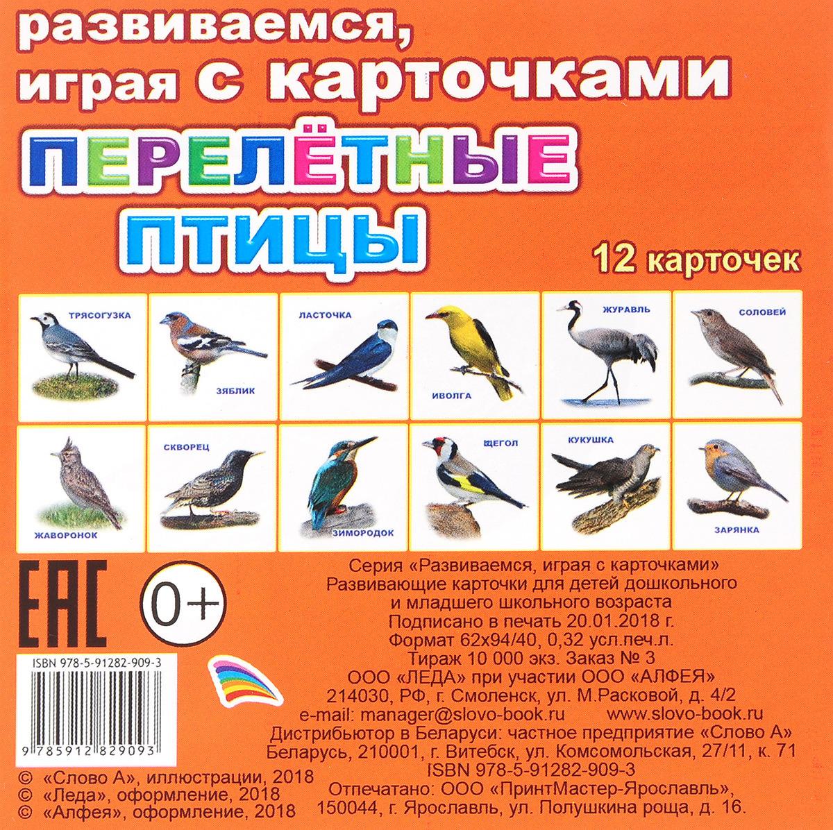Перелетные птицы. Обучающие карточки