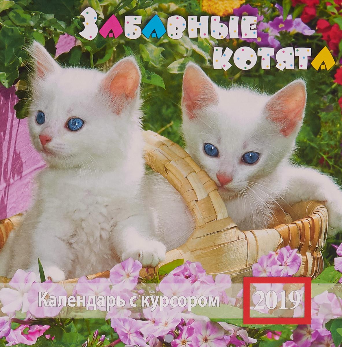 Календарь на скрепке с курсором на 2019 год. Забавные котята календарь 2018 на скрепке краски природы