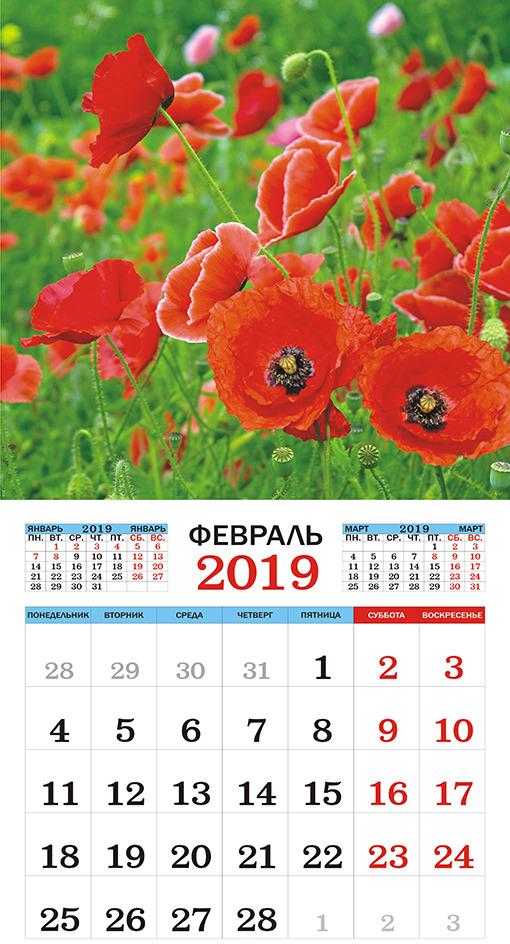 Календарь настенный на 2019 год (на скрепке). Полевые цветы.