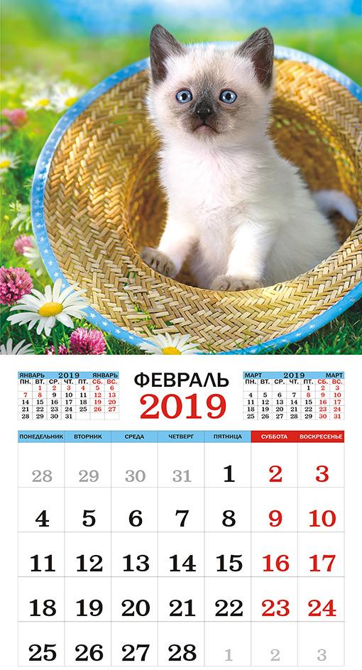Календарь настенный на 2019 год (на скрепке). Кошки.