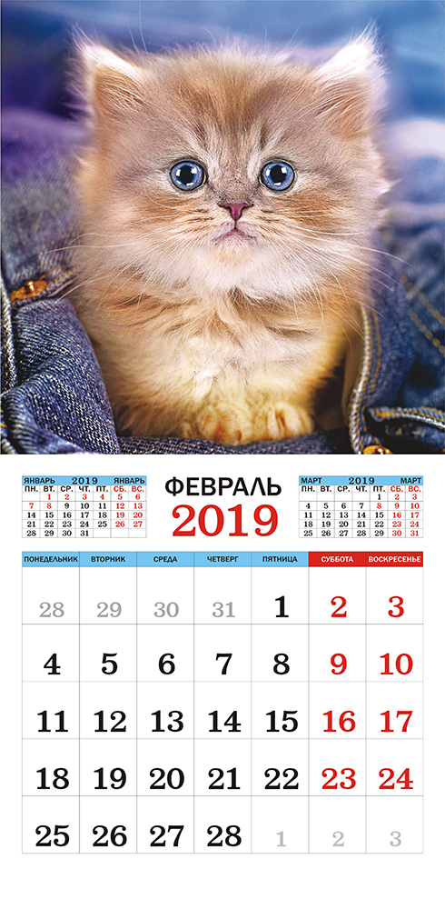 Календарь на 2019 год (на скрепке). Серый забияка.