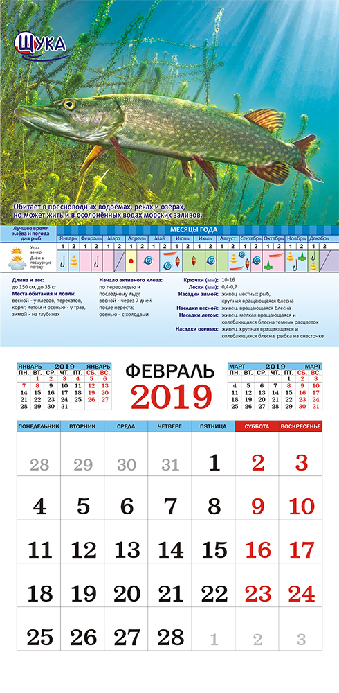 Календарь на 2019 год (на скрепке). Рыбалка.