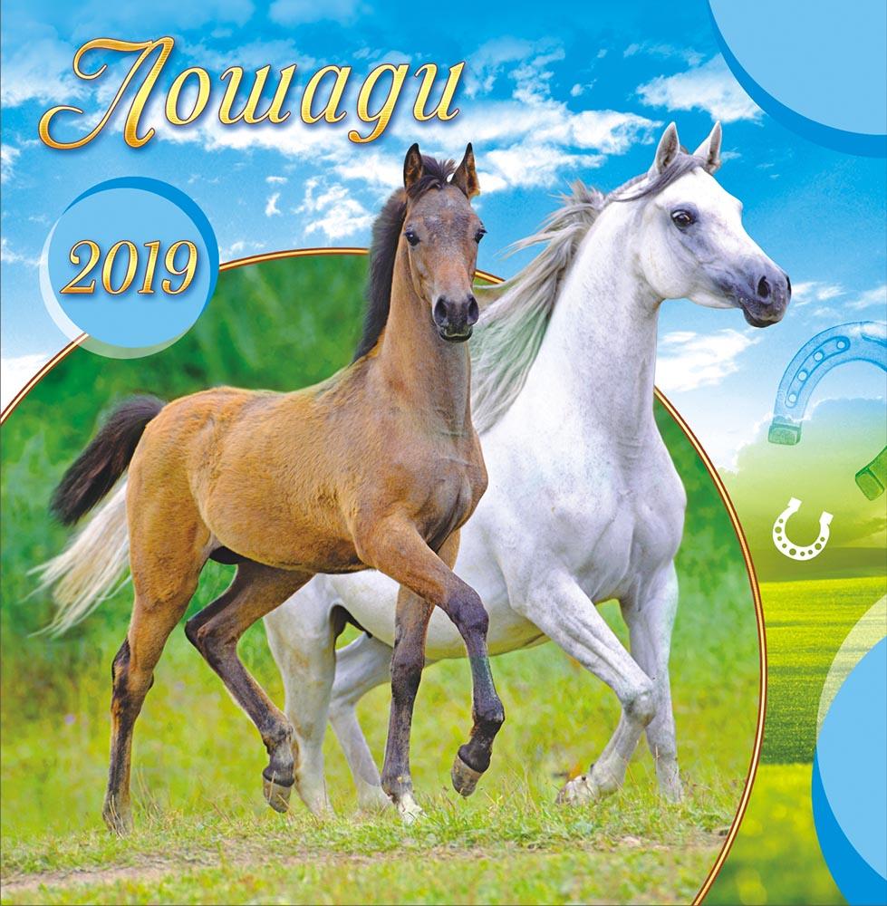 Календарь на 2019 год (на скрепке). Лошади