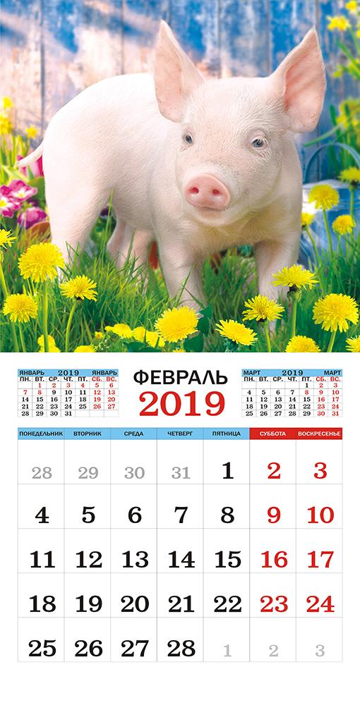 Календарь на 2019 год (на скрепке). Весёлый поросёнок.