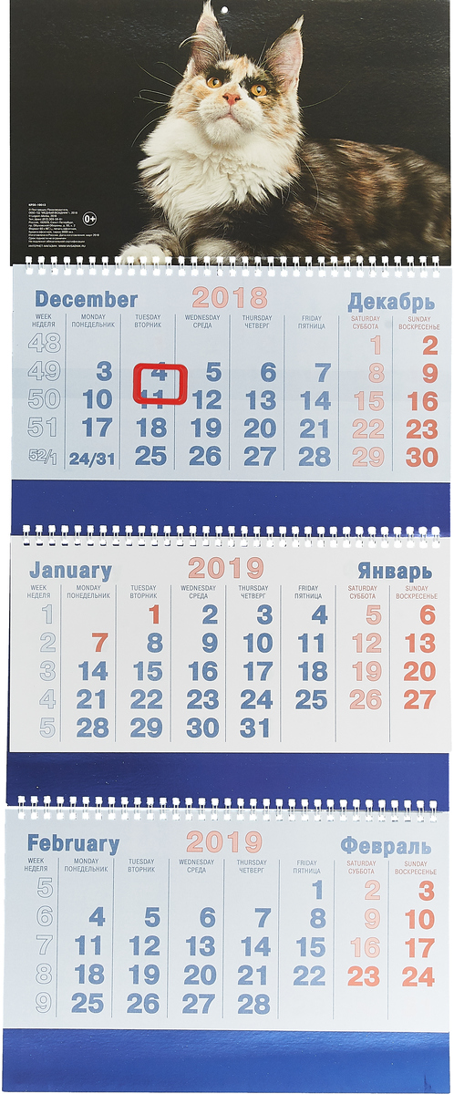 Календарь 3-секционный на 2019 год. Кот календарь с астропрогнозом 100 140 календарь 2019