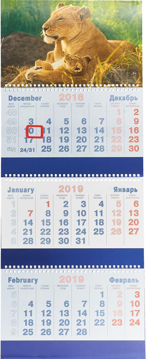 Календарь 3-секционный на 2019 год. Львица и львенок календарь 2019 праздник всем