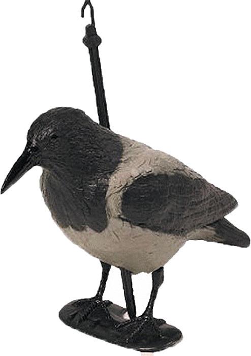 """Чучело подсадное - ворона. Объемная пустотелая чучалка ворона серая с лапами на опоре выполнена из ударопрочного пластика. Применяется на гусиной и утиной охоте: чучело ворона высаживается в непосредственной близости к за сидке охотника, на месте с хорошим обзором (например прямо на шалаше). Для птицы это служит доказательством того, что место абсолютно спокойно и безопасно. Кроме того, это чучело вороны используют при охоте на ворон, сорок и соек.  На гусиной охоте чучело ворона устанавливается немного в стороне от профилей гусей, так как в природе ворон никогда не сядет среди пасущихся гусей.  На месте охоты чучело вороны можно поставить на колышек, отстегнув лапы, а можно на лапы с дополнительной фиксацией колышком, чтобы чучело вороны не сдувало ветром. Реалистичная, """"живая"""" расцветка и хорошее качество окраски. Чучело ворона не б ликует на солнце.  В комплекте: туловище, лапки и колышек, который при транспортировке спрятан внутрь чучела. Крючок на колышке предназначен для подвешивания чучела ворона на шнур.  1 чучалка весит приблизительно 0,260 кг. Габариты (ДхШхВ) на лапах (без колышка, он спрятан внутрь) приблизительно 37х12х24 см."""