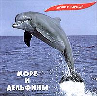 Звуки природы. Море и дельфины звуки природы стихия воды